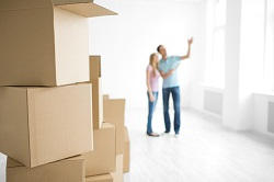 Expert Movers and Packers in SE20